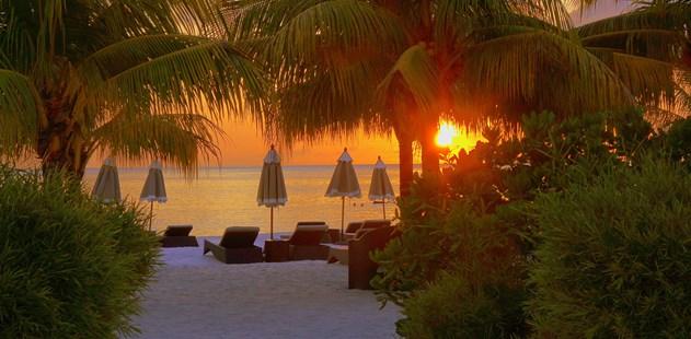 The World's Best Paradise Island Wellness Retreats
