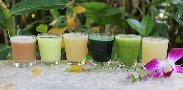 A Beginners Guide to Detox Holidays: 10 Things You Should Know